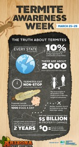 Termite Awareness Infographic