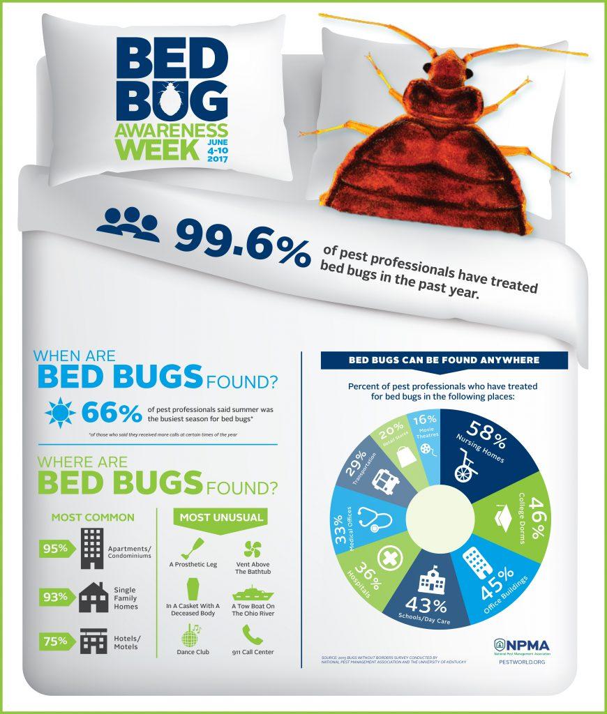 bbaw-infographic-2017